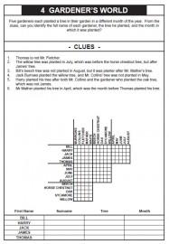 100 Logic Problems PDF